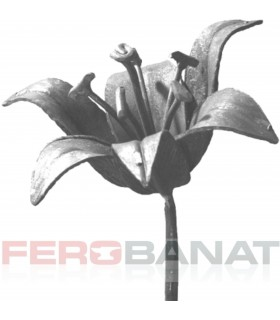 Floare F21 fier forjata crin rozeta